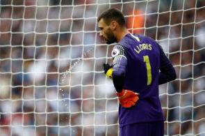 Hugo Lloris, Tottenham Hotspur