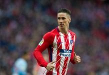 Fernando Torres to play in Australia