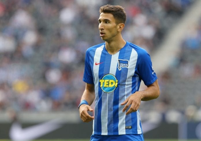 Image result for grujic hertha