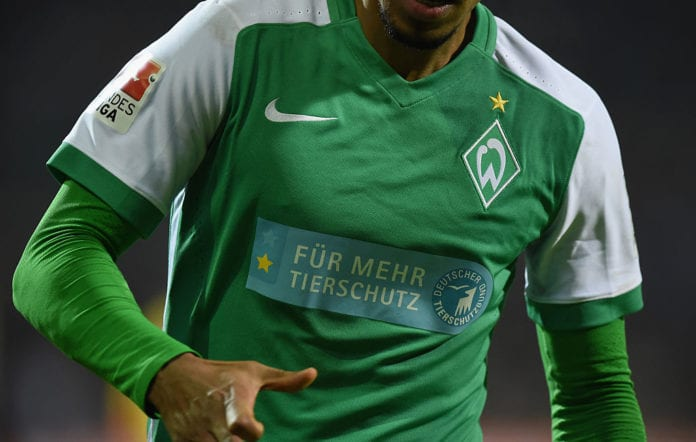 BREMEN, GERMANY - NOVEMBER 28: The shirt of a player of Bremen displays a logo to support the protction of animals during the Bundesliga match between Werder Bremen and Hamburger SV at Weserstadion on November 28, 2015 in Bremen, Germany. (Photo by Stuart Franklin/Bongarts/Getty Images)