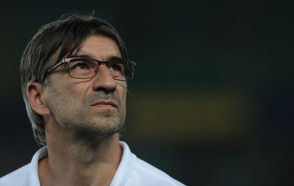 Ivan Juric, Hellas Verona, Serie A