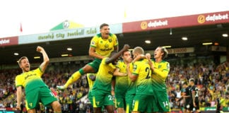 norwich city, manchester city, premier league