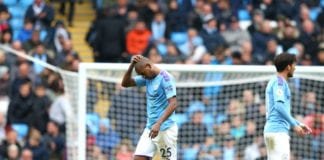 Fernandinho, Manchester City, Premier League