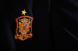 Spain v Belarus - FIFA 2014 World Cup Qualifier