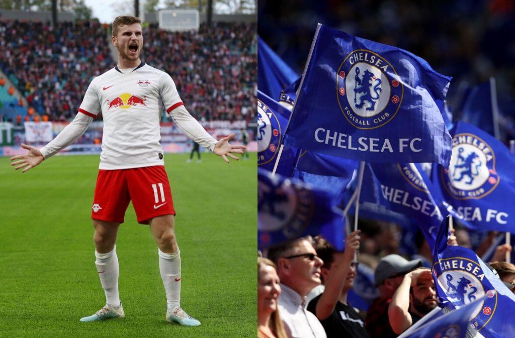 Werner, Chelsea